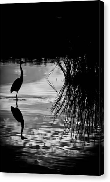 Marsh Reflection Canvas Print