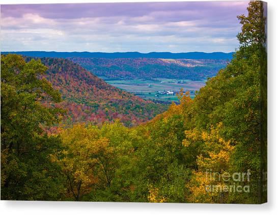 Martin Hill Foliage Canvas Print