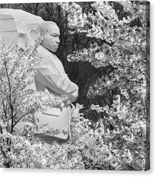 Martin Canvas Print - Martin Luther King Memorial Through The Blossoms by Mike McGlothlen