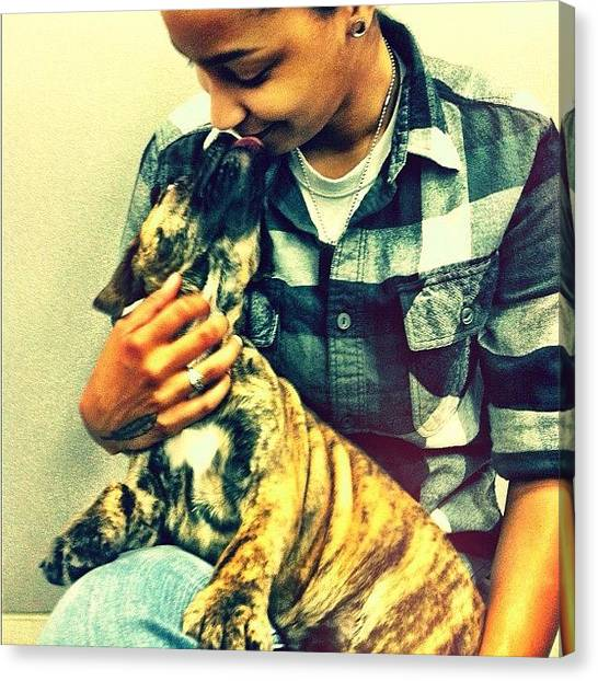 Mastiffs Canvas Print - #mastiff #puppy by Tori Reid