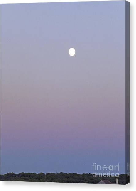 Canvas Print featuring the photograph Mauve Moonlight by Dee Flouton