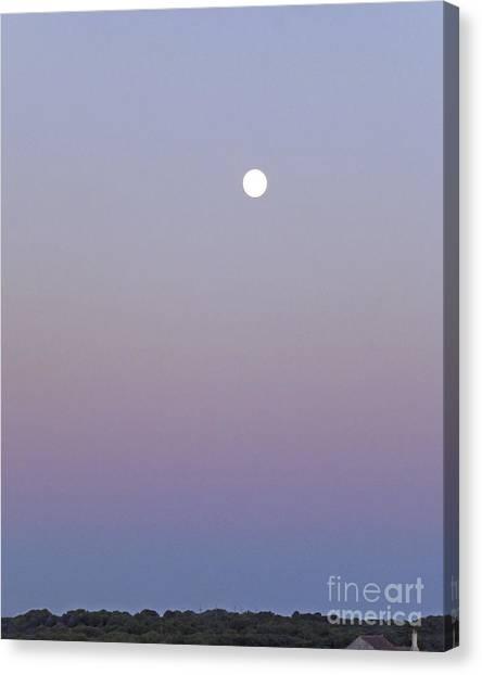 Mauve Moonlight Canvas Print