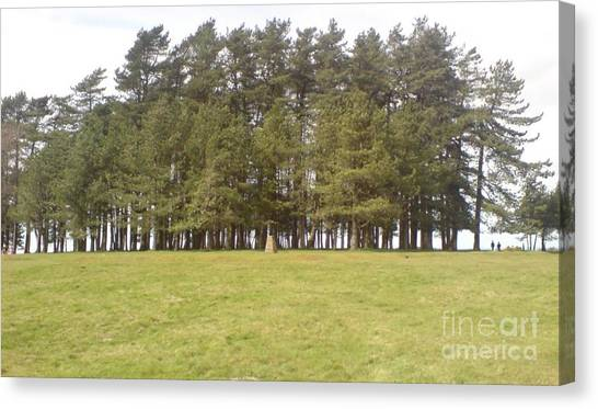 May Hill Tree Tops Canvas Print