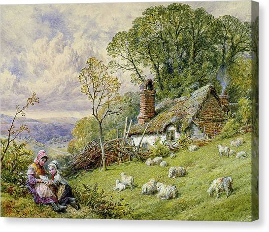 Ewe Canvas Print - May Time by William Stephen Coleman