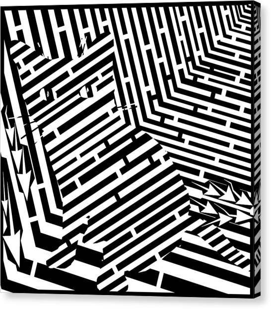 Maze Of Snarly The Cat Canvas Print by Yonatan Frimer Maze Artist