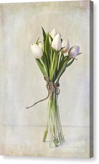 Knot Canvas Print - Mazzo by Priska Wettstein