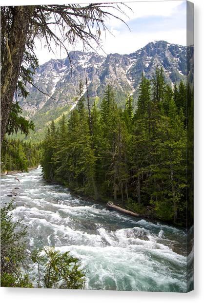 Mcdonald Creek In Glacier Np-mt Canvas Print