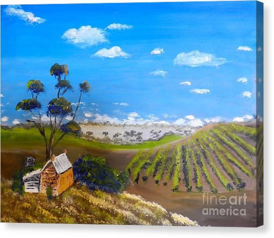 Mclarren Vale Vine Yards Canvas Print