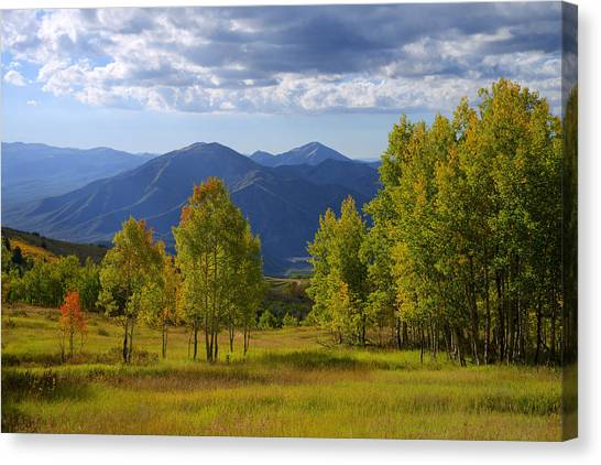 Cloud Forests Canvas Print - Meadow Highlights by Chad Dutson