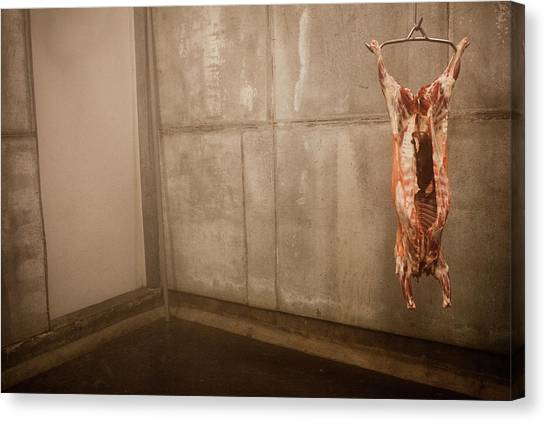 Carcass Canvas Print - Meat Carcass In A Freezer, No People by Monica Donovan