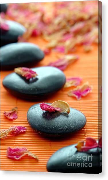 Meditation Zen Path Canvas Print