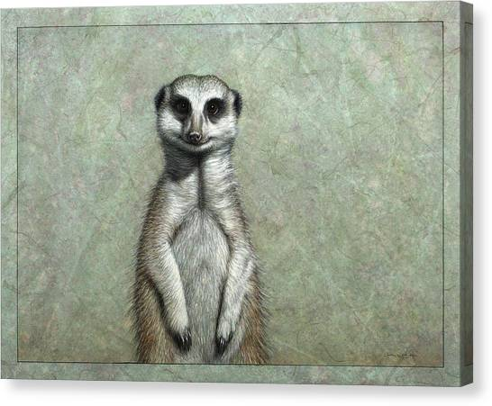 Ground Canvas Print - Meerkat by James W Johnson