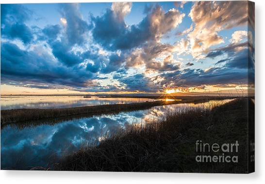 Melodic Moment Canvas Print