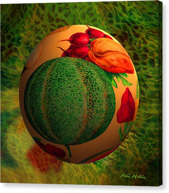 Cantaloupe Canvas Print - Melon Ball  by Robin Moline