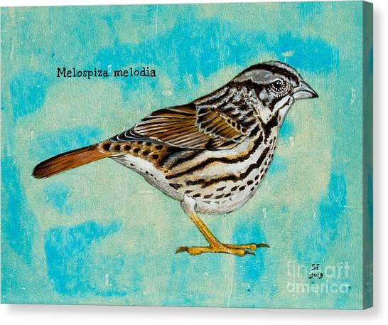 Melospiza Melodia Canvas Print