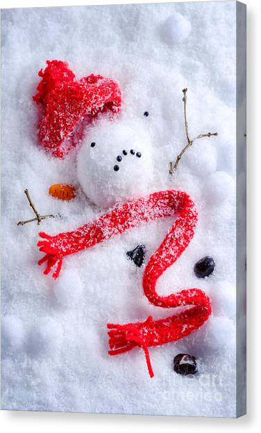 Snowball Canvas Print - Melted Snowman by Amanda Elwell