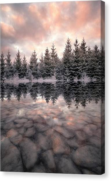 Hoarfrost Canvas Print - Melting by Christian Lindsten
