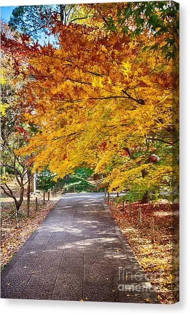 Memories Of Autumn-2 Canvas Print by Tad Kanazaki
