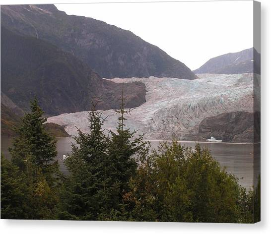 Mendenhall Glacier From The Path. Canvas Print