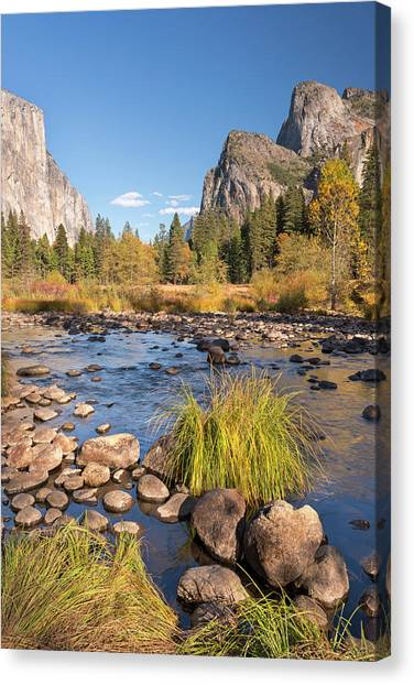 Cliff Burton Canvas Print - Merced River In Yosemite Valley by Adam Burton / Robertharding