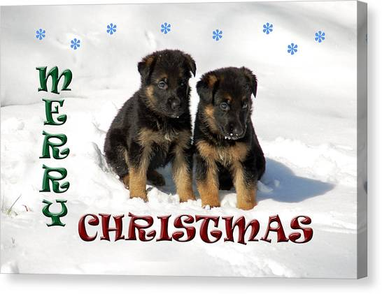 Merry Christmas Puppies Canvas Print