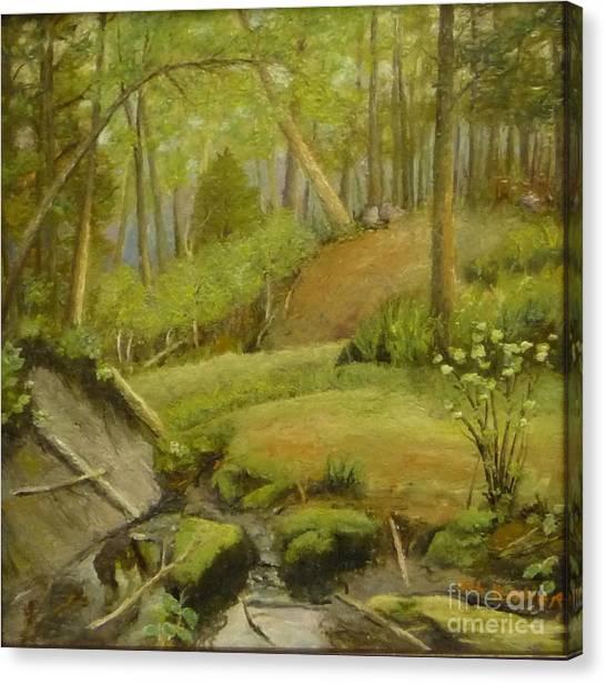 Merville Bc  Canvas Print