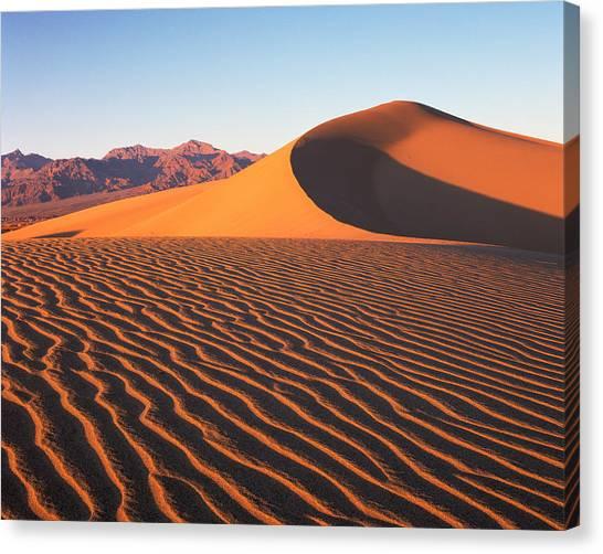 Mesquite Dunes 1 Canvas Print