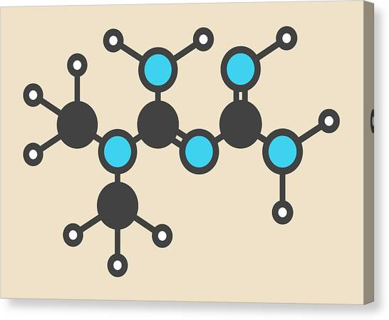 Diabetes Canvas Print - Metformin Diabetes Drug Molecule by Molekuul