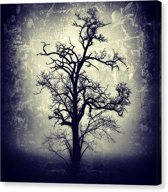 Horror Canvas Print - #mgmarts #all_shots #instahub by Marianna Mills