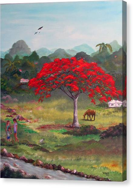 Mi Rinconcito Canvas Print