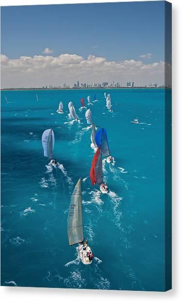 Miami Beach Regatta Canvas Print by Steven Lapkin