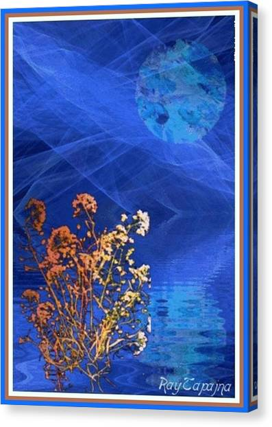 Midnight Flowers Canvas Print by Ray Tapajna