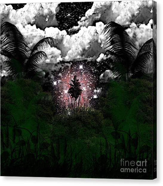 Midnight In The Wild Canvas Print