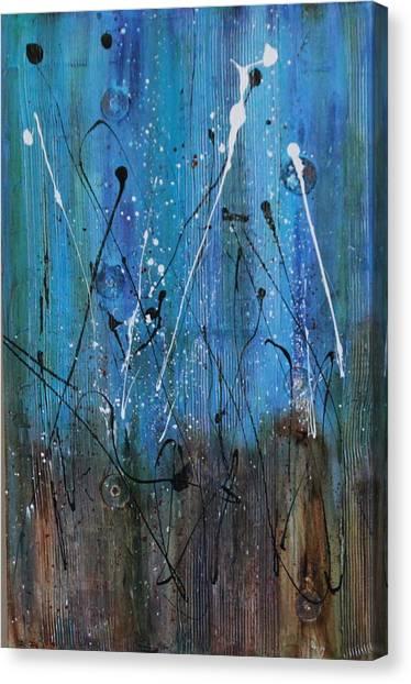 Starry Nights Canvas Print by Lauren Petit