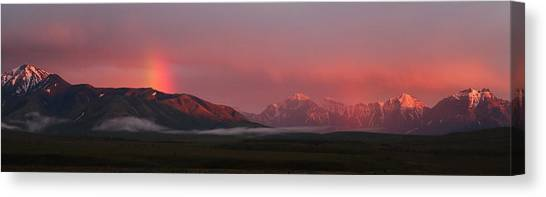 Midnight Light Canvas Print