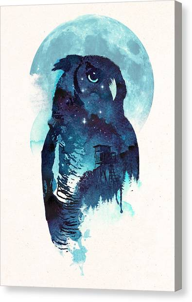Owls Canvas Print - Midnight Owl by Robert Farkas