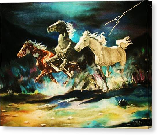 Midnight Stampede Canvas Print