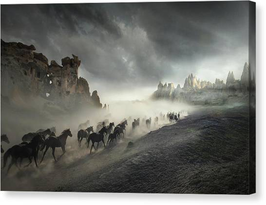 Horses Galloping Canvas Print - Migration by H?seyin Ta?k?n