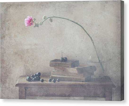Mild Morning Of October Canvas Print by Delphine Devos