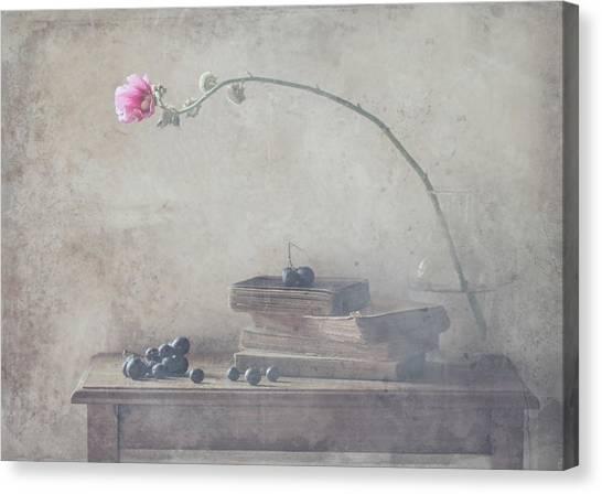 Romantic Flower Canvas Print - Mild Morning Of October by Delphine Devos