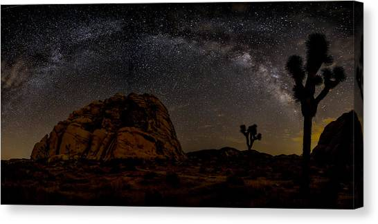 Featured Images Canvas Print - Milky Way Over Joshua Tree by Peter Tellone