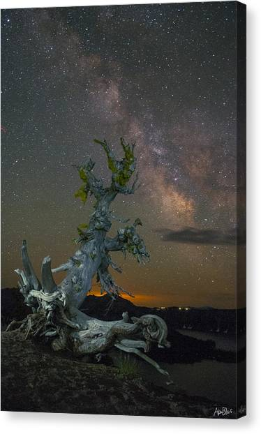 Milky Way Tree Canvas Print by Abe Blair