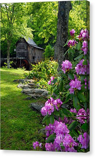 Mill And Rhododendrons Canvas Print