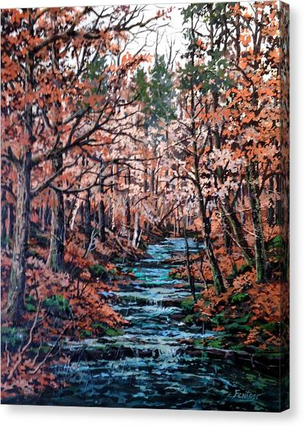 Mill Creek Canvas Print by W  Scott Fenton