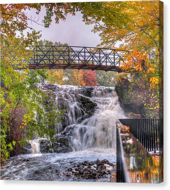 Mill Pond Park Canvas Print