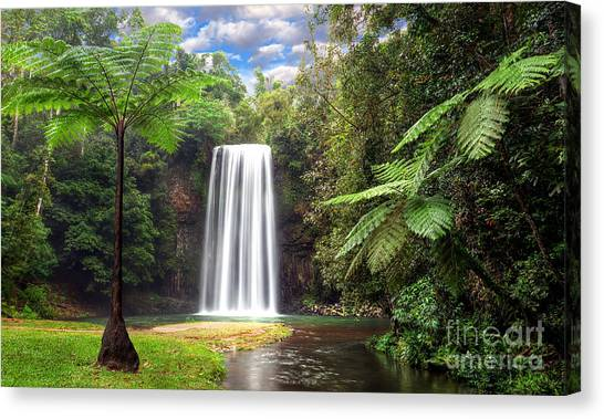 Milla Milla Falls Canvas Print by Shannon Rogers