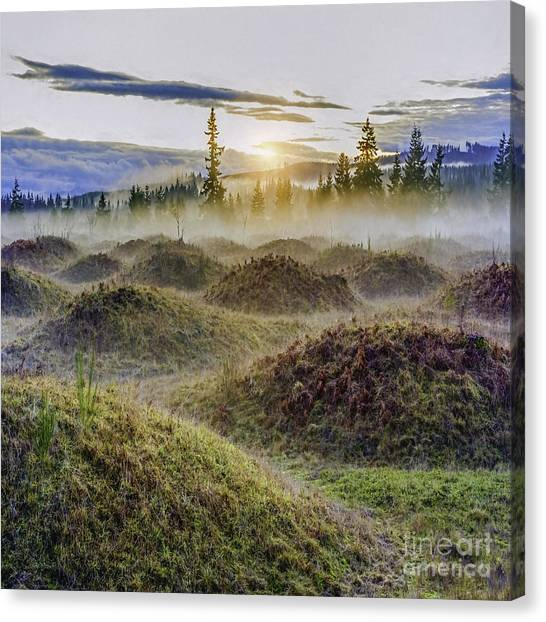 Mima Mounds Mist Canvas Print