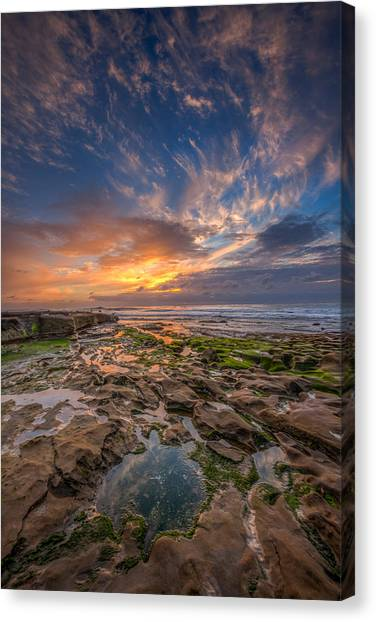 Big Sky Canvas Print - Mimic by Peter Tellone