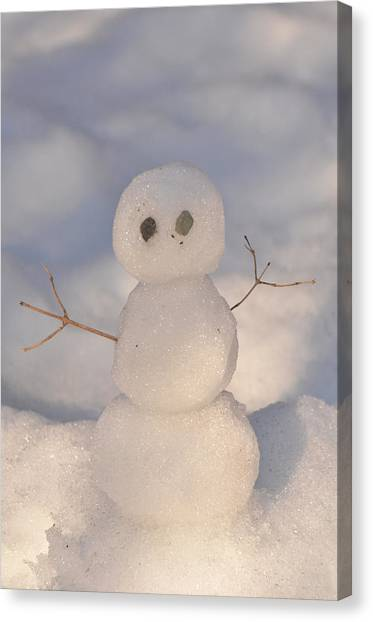Miniature Snowman Portrait Canvas Print by Nancy Landry