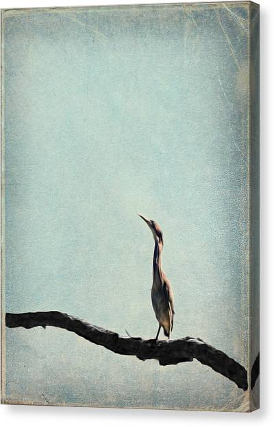 Minimalist Vintage Inspired Green Heron On Pale Blue Sky Canvas Print